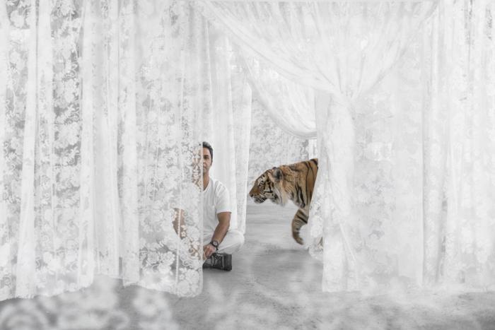 Mezi krajkovými bílými záclonami zavěšenými vněkolika řadách za sebou zpola vykukuje klidně sedící muž vbílém oblečení, nohy má křížem. Zprava kněmu přichází tygr./Between several rows of hanging white curtains, a man wearing white clothes and with legs crossed peeks out at us. A tiger approaches him from the right.